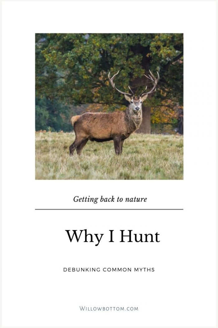 Pin this! Why I Hunt - Willowbottom.com