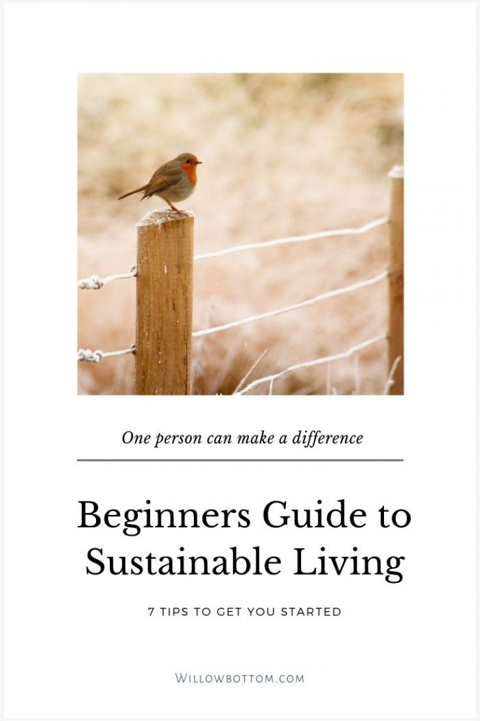 Pin This! Beginners guide to sustainable living - Willowbottom.com