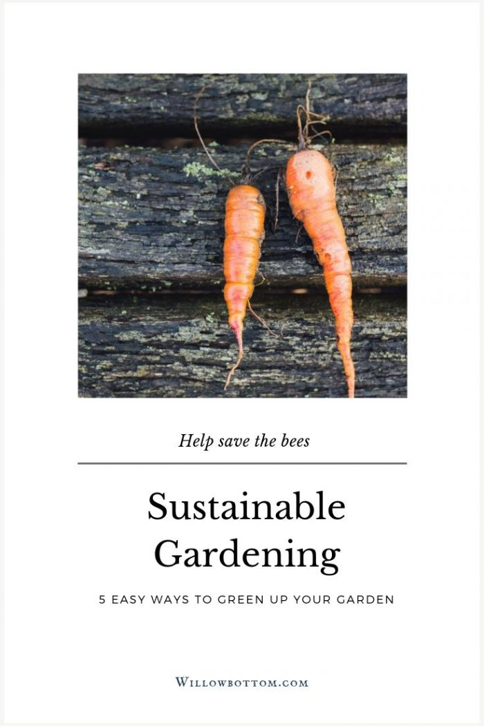 Pin This! Sustainable gardening - Willowbottom.com