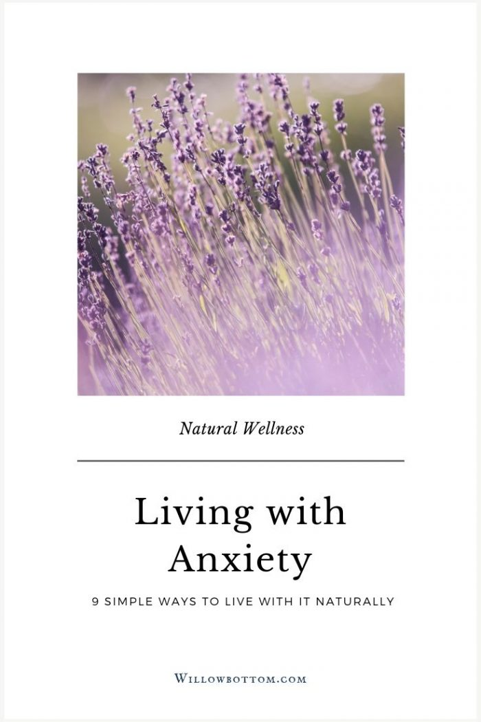 Pin This! Living with Anxiety - Willowbottom.com