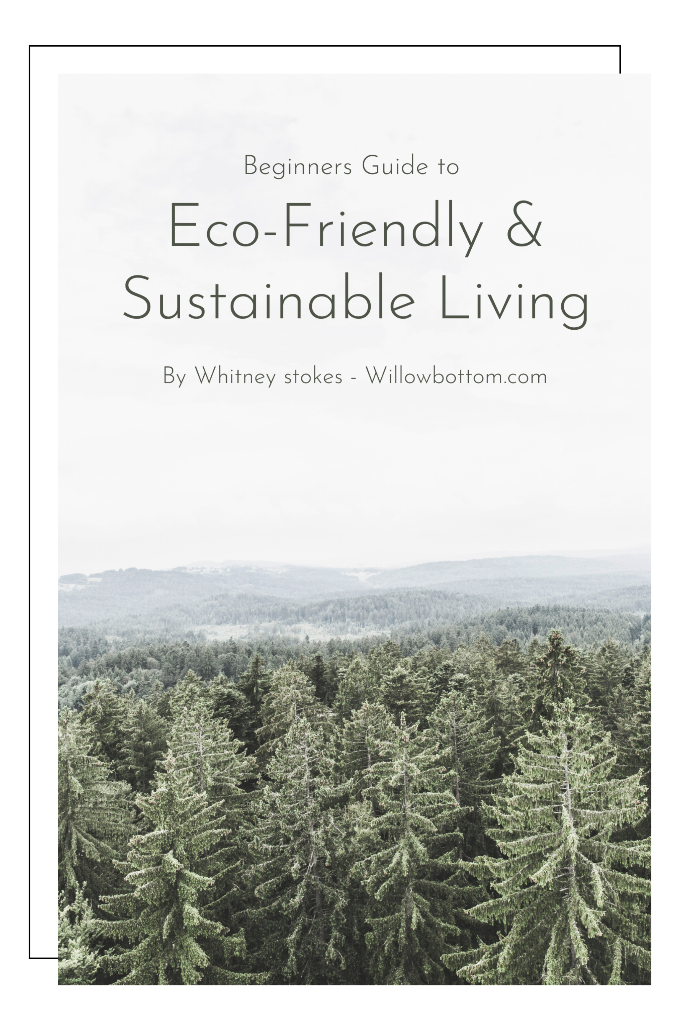 your eco-friendly living journey